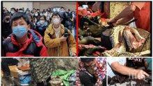 ОПАСНО: Ето откъде тръгват заразите в Китай - търговията с диви животни още не е забранена