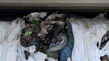 Връщаме в Италия 20 от контейнерите с отпадъци на пристанище Варна-запад