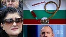 Калина Андролова попиля Румен Радев: Първо е нацията, после амбициите на жена ти. Само с алчност и вероломство не става