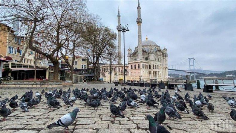 Спад на чужденците в Турция през януари-март с 54%