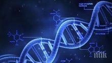 ДНК-то ни мутира от... ленив живот