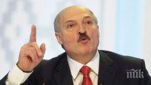 В разгара на коронавирусната епидемия: Президентът на Беларус в акция за засаждане на дръвчета