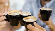Датски учени установиха, че кафето променя усещанията на вкусовите рецептори