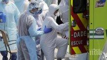 Рекорден спад на смъртните случаи от коронавирус в САЩ