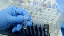 Новите случаи на коронавирус в Пловдив - един от града и трима от Брестовица