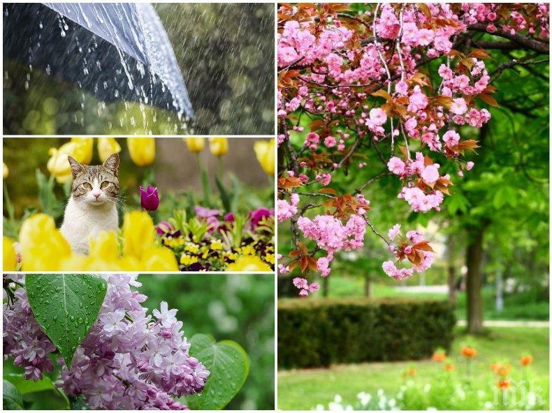 ЮНСКИ КАПРИЗИ: Слънцето ще грее щедро, дъждовете ще се редуват с градушките, температурите ще достигнат 27 градуса