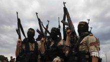 ИДИЛ уби 11 членове на сирийските сили за сигурност при засада в пустинен район