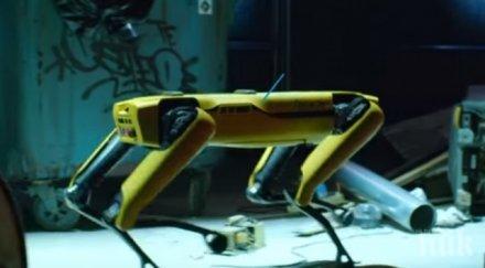 Куче робот патрулира между хората да спазват дистанция