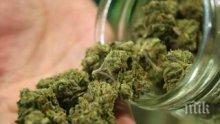 Задържаха под стража студент от Икономическия във Варна, пласирал марихуана, амфетамини и кокаин