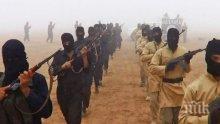 """В Ирак хванаха главатаря на """"Ислямска държава"""""""