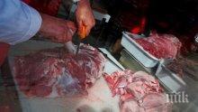 Кланица в Нидерландия е огнище на коронавируса