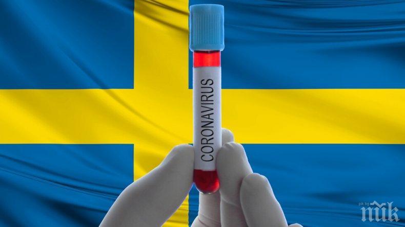МОР В ШВЕЦИЯ: Жертвите на коронавируса надхвърлиха 4000