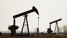 Петролът приключва седмицата на червено