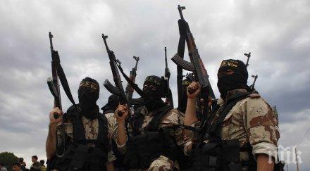 ислямска държава covid божие наказание враговете