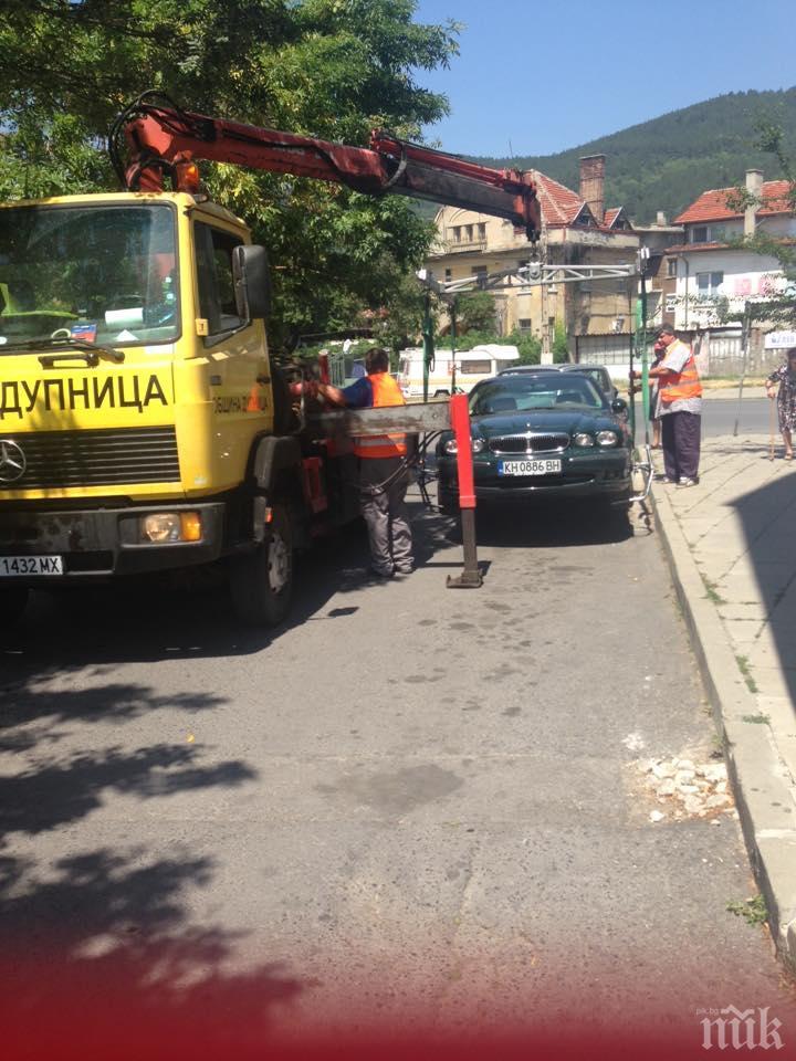 Пуснаха уличния паяк в Дупница
