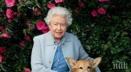 личен готвач глези любимите коргита кралица елизабет