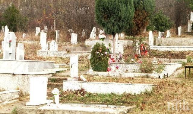 Общината в Перник осигурява безплатен транспорт на Задушница през 15 минути