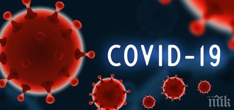 Черна статистика: Жертвите на коронавируса по света вече са над 376 000