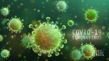 Бразилия надмина Италия по смъртни случаи от коронавирус