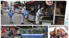 ЛОШИ НОВИНИ ОТ КИТАЙ: Мутацията на COVID-19 в Пекин е по-опасна от уханския щам