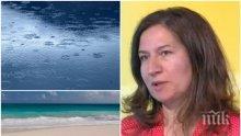 ПРОГНОЗА: Синоптик от НИМХ разкри кога ще спрат валежите и какво лято ще имаме