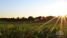 """ДФ """"Земеделие"""" започва проверки на терен на фермерите, искащи субсидии"""
