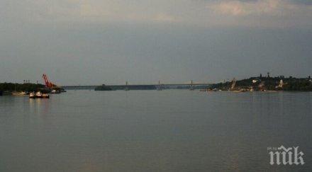 природозащитници пуснаха 000 моруни река дунав