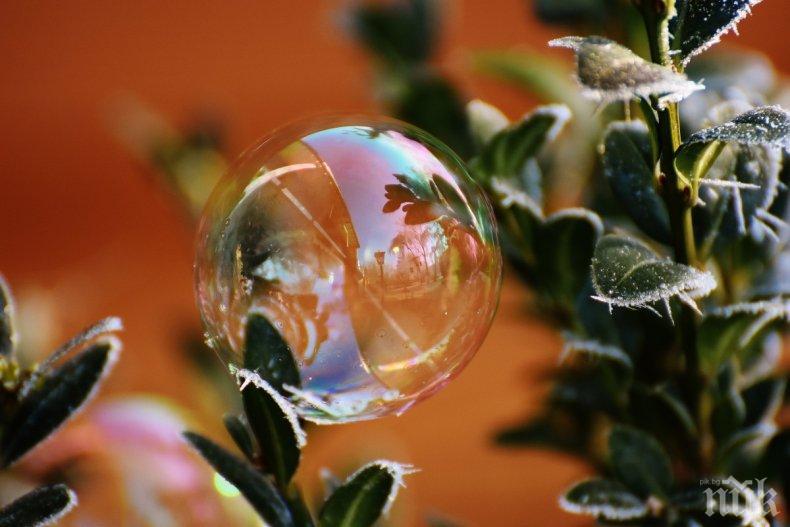 ОТ ДРОНОВЕ: Ще опрашват растенията със сапунени мехурчета вместо пчелите