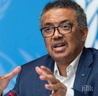 Шефът на СЗО: В момента по света се разработват 141 ваксини срещу коронавируса