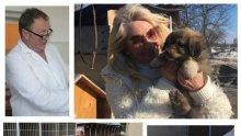 ПЪРВО В ПИК: След 3-годишна битка, хлопнаха кепенците на кучешкия концлагер на ужасите в Дупница (СНИМКИ)