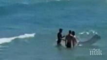 Спасител вади пиян турист от водата с шамари