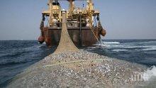 Кризата удари стопанския риболов