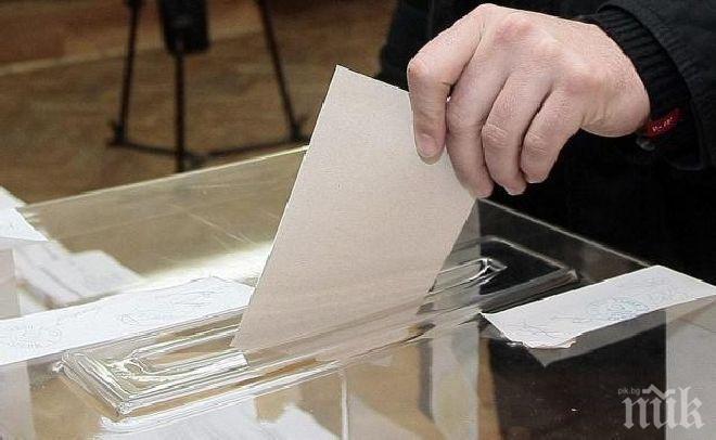 Грузия даде съгласие българите в страната да гласуват в посолството ни