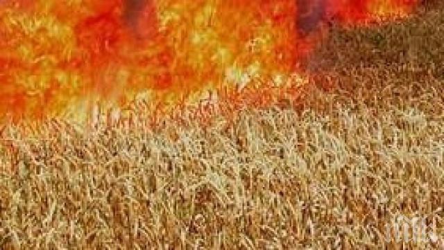 Пламна житен блок край село Тракиец