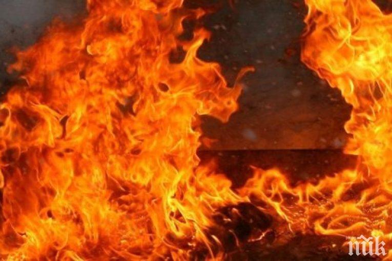 Пожар погълна ярета и кокошки на самотен мъж