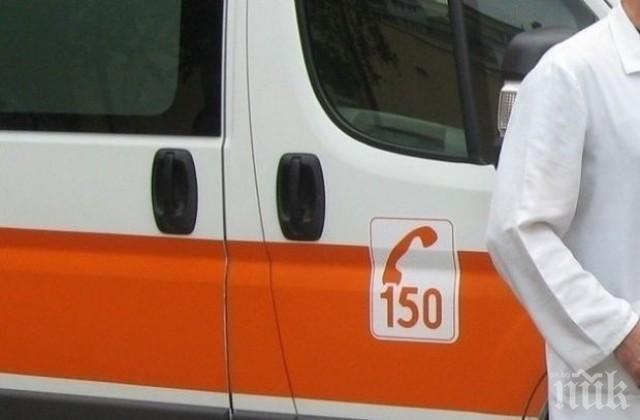 Петима младежи пострадаха след удар в дърво на пътя