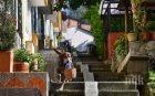 В ИЗОЛАЦИЯТА: Лабрадор доставя храна по домовете, заплащането е с лакомства