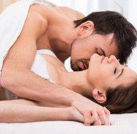 ПАЛАВНИЦИ: Трите типа секс, които мъжете никога няма да откажат