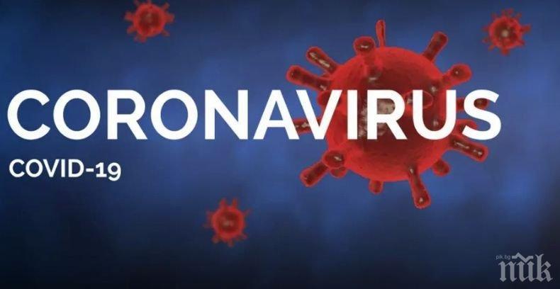 Огнище на коронавирус във ферма в Англия