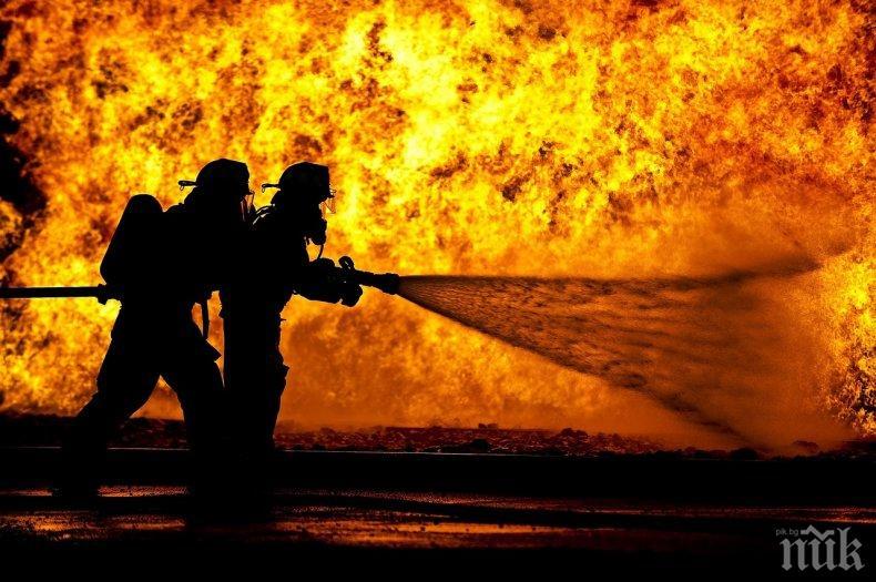 Огнеборци спасиха 3000 декара смесена гора и бензиностанция