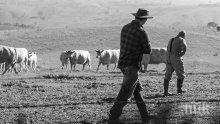 Фермери от Пловдивско взеха над 1 млн. лева субсидии