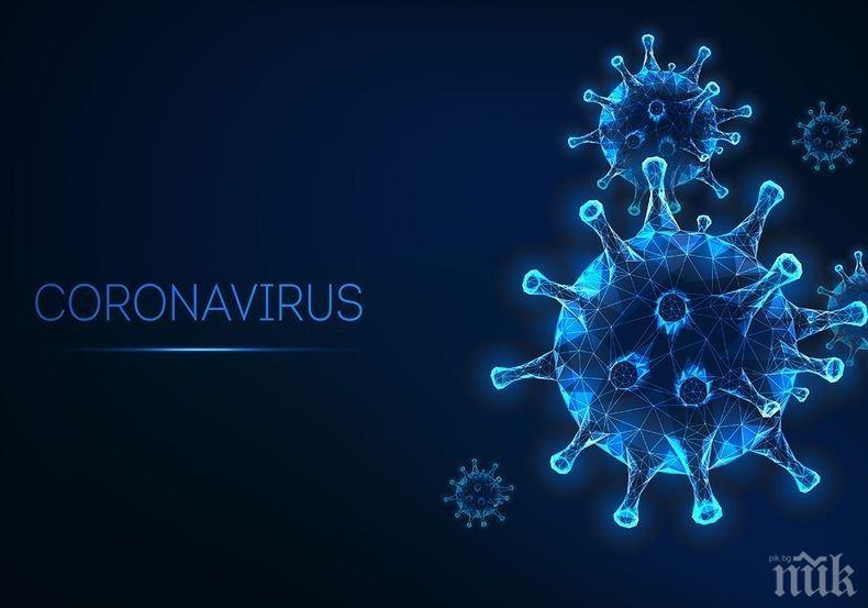 Заразените с коронавируса по света са над 13,5 млн. души