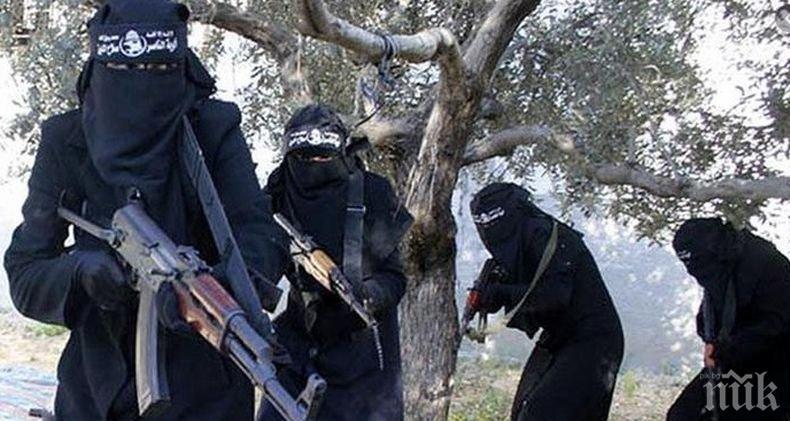 """Иракските спецслужби са елиминирали високопоставен терорист от """"Ислямска държава"""""""