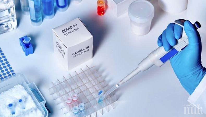 От СЗО обявиха за над 215 000 новозаразени с коронавируса по света за денонощие