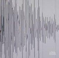 мощно земетресение рихтер разтърси папуа нова гвинея риск цунами