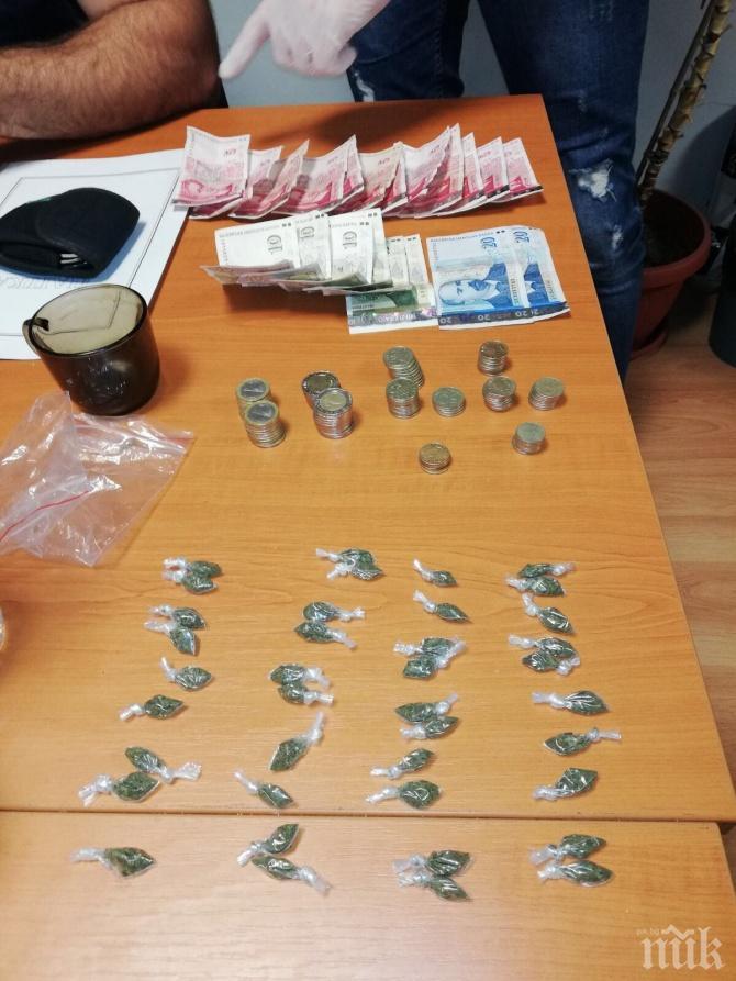 Дилър на дрогата бонзай е заловен в Пловдив