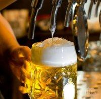 НАЗДРАВЕ: Ето какво може да лекувате с бира