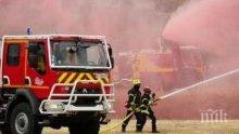 Пожар в свинеферма във Франция унищожи близо 1 700 прасета