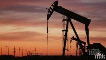 Петролът дръпна леко нагоре, но остава под 44 долара за барел