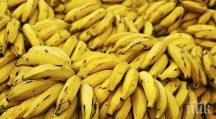 куче откри кокаин контейнер банани митница гърция